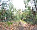 Caminos abandonados